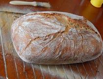 Traditionellt lantligt bröd med skorpan Fotografering för Bildbyråer