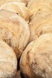 Traditionellt portugisiskt hemlagat bröd Royaltyfri Foto