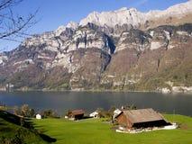 Traditionellt schweizarelandskap Arkivfoton