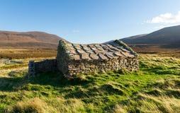 Traditionellt stenhus, Rackwick fjärd, Orkney Royaltyfri Foto