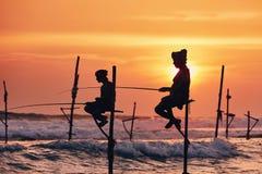 Traditionellt styltafiske i Sri Lanka arkivbild