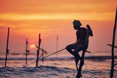 Traditionellt styltafiske i Sri Lanka arkivfoto