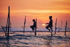 Traditionellt styltafiske i Sri Lanka arkivbilder