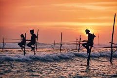 Traditionellt styltafiske i Sri Lanka royaltyfri fotografi