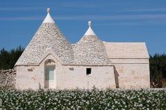 Traditionellt vit-tvättat trullihus med det koniska taket som lokaliseras utanför staden av Locorotondo i den Itria dalen, Puglia royaltyfri foto