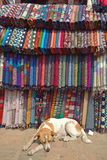 Traditionnal fabric in a tamel market  Nepal, Asia. Royalty Free Stock Images