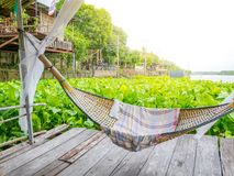 Traditonal thai cuture cradle hanging on the raft at the river water hyacinth.Relax time in the holiday sunnyday. royalty free stock photos