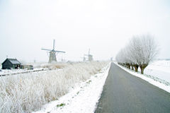 Traditonal windmills in the countryside from the Netherlands Stock Photography