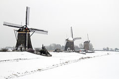 Traditonal windmills in the countryside from the Netherlands Royalty Free Stock Photo