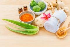 Tradizionale degli ingredienti tailandesi di cura di pelle Fotografia Stock