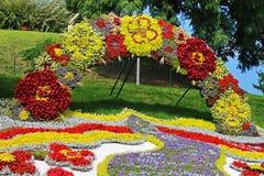 59 tradizionali annuali fioriscono il paese di mostra una, Kyiv, Ucraina Fotografie Stock Libere da Diritti
