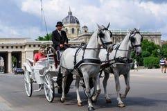 tradizione della carrozza a cavalli, Vienna Austria Fotografia Stock Libera da Diritti