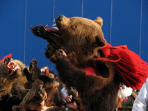 Tradizioni di inverno in Romania Immagine Stock Libera da Diritti