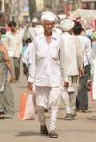 Tradtional Gujarati suknia, Chorno & Kediyu, Obraz Royalty Free
