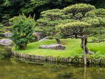 Tradyci Japonia ogród, Zen ogród Zdjęcia Stock