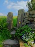 Tradycyjna kamienna brama lub przełaz w suchej kamiennej ścianie z kwiatami i paprociami przed wiosną zieleniejemy łąkę zdjęcia royalty free