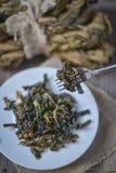 Tradycyjna kobylak sałatka Fotografia Stock