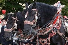 Tradycyjna kostiumowa parada w Monachium Bavaria Obrazy Stock