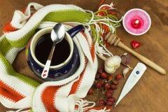Tradycyjna medycyna przeciw zimnom i grypie Rosehip herbata Traktowanie choroba Zdjęcie Royalty Free