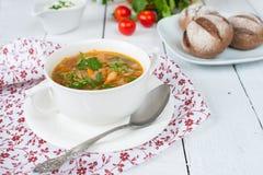 Tradycyjna Rosyjska kuchnia: jarzynowa polewka od kapusty i Tom Fotografia Stock
