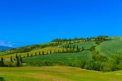 Tradycyjna wiejska droga w Tuscany Obraz Royalty Free