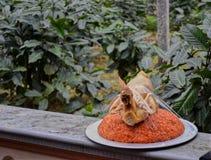 Tradycyjna Wietnamska ślubna kuchnia fotografia stock