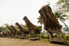 Tradycyjna wioska, Taniec Toraja Obraz Stock