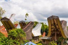 Tradycyjna wioska, Taniec Toraja Fotografia Royalty Free