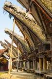 Tradycyjna wioska Taniec Toraja, Indonezja Obrazy Stock