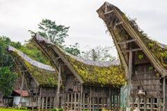 Tradycyjna wioska Taniec Toraja, Indonezja Obraz Stock