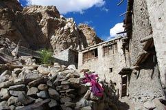 Tradycyjna wioska w Ladakh, India Obraz Stock
