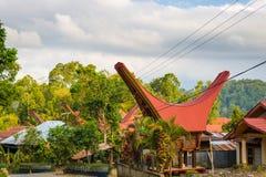 Tradycyjna wioska w Taniec Toraja, Południowy Sulawesi, Indonezja Fotografia Royalty Free