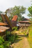 Tradycyjna wioska w Taniec Toraja, Południowy Sulawesi, Indonezja Zdjęcia Royalty Free