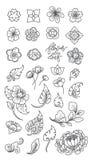Tradycyjne kwiatu i liścia kreskowe ikony odizolowywać asia japończycy tajlandzki chińczyk royalty ilustracja