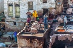 Tradycyjne rzemienne garbarnie w fezie, Maroko Obraz Stock
