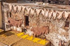 Tradycyjne rzemienne garbarnie w Maroko Fotografia Royalty Free