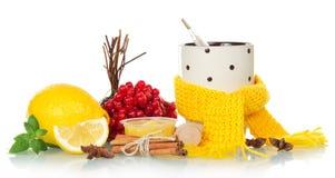 Tradycyjne zimne medycyny Fotografia Stock