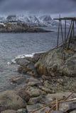 Tradycyjnego Norweskiego dorsza słupa Suszarnicze budowy przy Lofoten wyspami Obrazy Stock