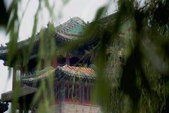 Tradycyjni Chińskie budynek widzieć przez wierzbowych liści obraz stock