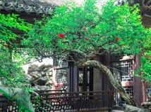 Tradycyjni chińskie budynek z ozdobnymi dachowymi i czerwonymi okno przy Yu ogródami, Szanghaj, Chiny obrazy stock