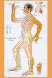 Tradycyjni Chińskie akupunktury mapa Zdjęcia Stock