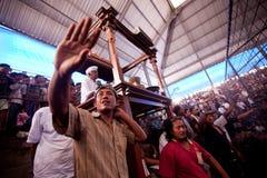 tradycyjni cockfighting Balijczyków ludzie Zdjęcia Royalty Free