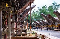 Tradycyjni domy przy Kete Kesu wioską, Taniec Toraja, Sulawesi obraz stock