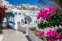 Tradycyjni domy w Santorini Zdjęcia Stock