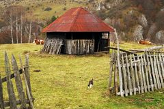Tradycyjni drewniani domy w Carpathians w jesieni obraz royalty free