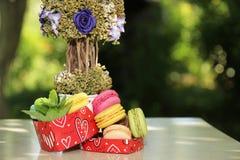 Tradycyjni francuscy kolorowi macarons w pudełku na natury tle Fotografia Stock