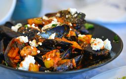 Tradycyjni Greccy mussels z koźlim serem zdjęcia royalty free
