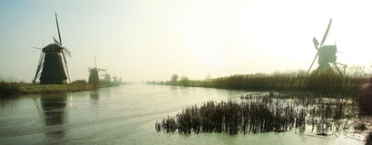 Tradycyjni Holenderscy wiatraczki przy świtem fotografia royalty free