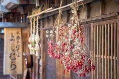 Tradycyjni Japońscy czerwoni chillies wiesza od pokrywającego strzechą dachu Obrazy Royalty Free