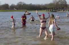 Tradycyjni nowy rok nurów zdjęcie royalty free